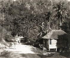 Bog Walk, Jamaica, ca 1890 West Indies, Commonwealth, Haiti, Barbados, Trinidad, Cuba, Old Jamaica, Jamaica History, Jamaican Art