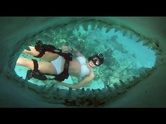 Amazing footage, sweet clear water, awesome sharks with diving.  What else could you ask for?