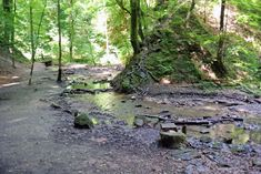 Die Hagenbachklamm in St. Andrä-Wördern führt auf einer Länge von 1,3 Kilometern gemütlich durch den nördlichen Teil des Wienerwalds. Hagen, Austria, Places To Visit, Plants, Photography, Travel, Holiday Destinations, Road Trip Destinations, Hiking