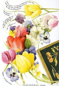 Tulips by Marjolein Bastin