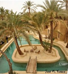 Travel and enjoy Egypt with the best Egypt travel agents. Egypt sunset, the tour operator in Egypt offers an extensive variety of tour packages. Egypt Civilization, Modern Egypt, Visit Egypt, Egypt Travel, Cairo Egypt, Egypt Today, Travel Tours, African Safari, Beautiful Places To Visit