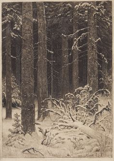 The Athenaeum - Thick Forest (Ivan Ivanovich Shishkin - ) Landscape Drawings, Landscape Art, Pencil Art, Pencil Drawings, Tree Art, Beautiful Artwork, Black Art, Monochrome, Sketch