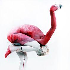 Ilusiones Ópticas - Body Art