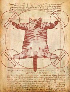 The Da Vinci Cat
