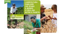 """Oggi è la biodomenica. """"Difendiamo il modello dell'agricoltura diffusa: con gli ogm si rischia di impoverire milioni di persone a vantaggio di un"""