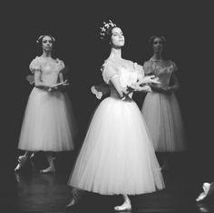 Heloïse Bourdon Giselle - Myrtha la_petite_photographe