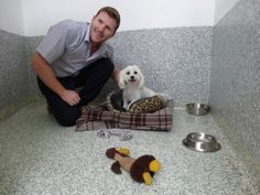 Midtown Pet Centre is a leading pet resort on the Gold Coast that provides luxury dog boarding kennels at competitive prices. Dog Boarding Kennels, Pet Resort, Gold Coast, Dog Bowls, Centre, Pets, Animals, Animales, Animaux
