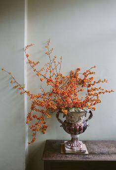The Best Flower Arrangement Ideas to Celebrate Fall arranjos de flores de outono Deco Floral, Arte Floral, Floral Design, Fall Floral Arrangements, Wedding Arrangements, Fall Flowers, Dried Flowers, Rustic Flowers, Cut Flowers