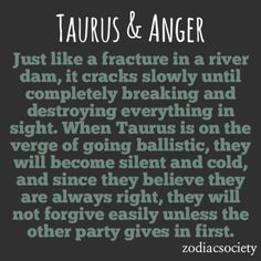 Don't anger the Taurus. My roommates need to learn this lollllll.