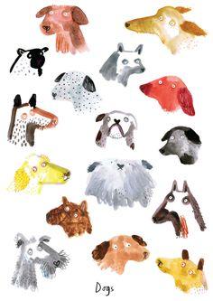 Dog Illustrations by Lorna Scobie