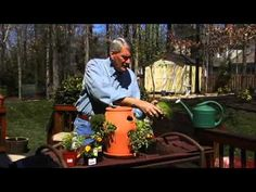 This Successful Home Gardening video shares garden experts advice on how to start container gardening with vegetables, herbs, flowers or fruit.     Step by step instructions on getting started with your new container garden, including materials, techniques and tips for a do-it-yourself container garden.     For more gardening information and the...