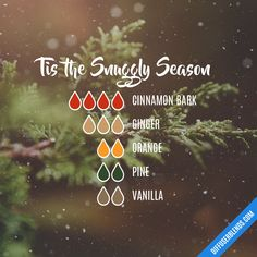 Tis the Snuggly Season Essential Oils Christmas, Essential Oil Perfume, Essential Oil Diffuser Blends, Doterra Essential Oils, Essential Oil Combinations, Savon Soap, Diffuser Recipes, Young Living, Aromatherapy Recipes
