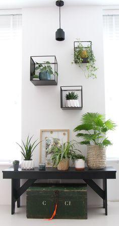 Geinspireerd door de presentatie van Igor en Judith en het boek van deze Urban Jungle bloggers werd het tijd om ook hier in huis groen toe te passen. Maar waar! #di_home_decor,#diy,#diy_crafts,#diy-room-decor,#diy_headboard