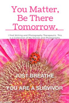 Is it fair to let the ones we love to miss out on tomorrow, ask them to stay. Brain Injury Awareness, How To Find Out, Give It To Me, Mental Health Therapy, Traumatic Brain Injury, My High School, High School Sweethearts, You Matter, Just Breathe