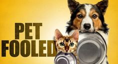 Pet Fooled, An investigative expose of the inner workings inside the commercial pet food industry, which has went largely unchallenged until now. Available on Netflix. Purina Dog Chow, Hills Science Diet, Puppy Food, Pet Food, Canned Dog Food, Animal Nutrition, Dog Feeding, Food Safety, Food Industry