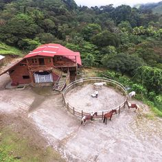 Looking for an authentic experience while in Costa Rica? Ask for our Madre Tierra farm experience and explore the wonder and natural beauty of an authentic, functioning farm. Stuff To Do, Things To Do, Monteverde, Costa Rica, Natural Beauty, Explore, House Styles, Nature, Instagram