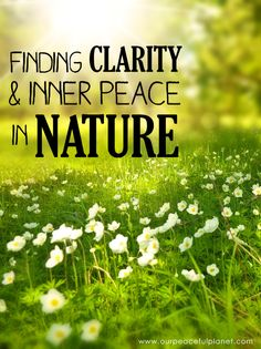 If you struggle to find clarity and inner peace, the answers can be as close as the nearest park, trail or field. Learn how to find peace in nature.