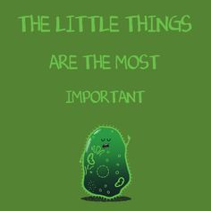 The most important things - NeatoShop
