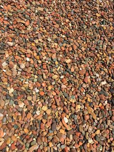 """Salt River Rock Cobbles 1-1/2"""" Some companies also call these Arizona River Cobbles and Pebbles but that is not accurate as the colors are totally different.  These cobbles are river stones from Arizona that add flair to a yard, a plant bed or a water feature. They come in a variety of colors and sizes that perfectly complement our gravel, rock, boulders and flagstone used in landscape and garden."""