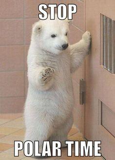 Stop! Polar time