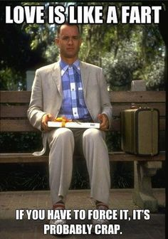Funny pictures about Forrest Gump gives the best love advice. Oh, and cool pics about Forrest Gump gives the best love advice. Also, Forrest Gump gives the best love advice photos. Tom Hanks, Robin Wright, Friday Pictures, Funny Pictures, Funny Pics, Friday Pics, Fail Pictures, Funny Images, Les Miserables