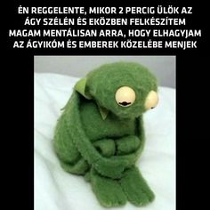 The 'Sad Kermit' meme will crush your hopes and dreams forever Reaction Pictures, Funny Pictures, Funny Pics, Dankest Memes, Funny Memes, Gym Memes, Gym Humor, Humor Humour, Diet Humor