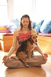 How to Meditate with Your Dog. I can't meditate by myself and I am pretty sure I'll never have a dog that is this well behaved. But cute idea otherwise!