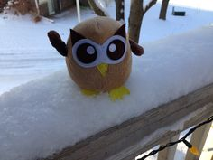 Owly is going to play in the snow before it all melts today. Day 25 of #yearofowly #lifeofowly