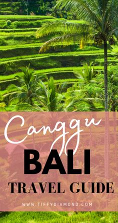 When deciding on Bali the choices were difficult. We had never been and we couldn't choose between Ubud and Canggu. We picked Canggu because it has a more kick-back vibe and is close to the beach. What drew us to Bali was the beautiful scenery, beach, villas, and affordability. I break down where we stayed in Bali, Costs, Villas, Day Clubs and Fun Excursions.     #Bali #Travel #BaliTravel #Canggu #Travelguide #BlackTravel #Asia