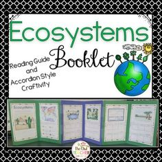 Ecosystem Accordion