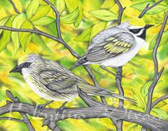 Little Birds artwork drawing $99 - $149 size preference see website Artwork Drawings, Bird Artwork, Little Birds, Website, Abstract, Painting, Animals, Summary, Animales