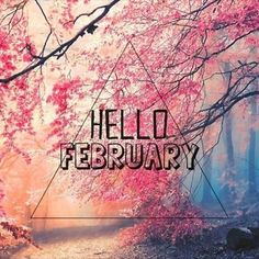 We have 70 Hello February quotes to bring in the new month. Welcome February and hopefully this month brings you blessings, happiness and joy. February Hello, Hello February Quotes, Welcome February, February Holidays, Hello May, February Images, Seasons Months, Days And Months, Months In A Year