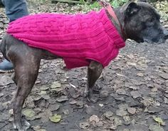 Easy Knit sweater for dogs. Easy to read instructions and measurments for custom dog sizes.