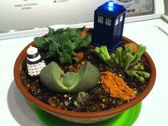 Doctor Who themed Fairy Garden