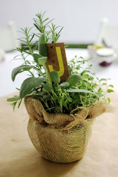 Burlap wrapped herb centerpieces sit atop simple brown paper tablecloths at a hip garden reception at the Loring-Greenough House. Photo by Lexi Adams