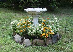 zinnias around bird bath - Google Search