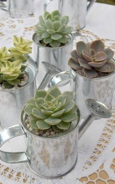 Inspired Wedding Favors Succulents in mini watering cans make perfect spring favors. Photo source:out side impact favorsSucculents in mini watering cans make perfect spring favors. Photo source:out side impact favors Succulent Wedding Centerpieces, Succulent Wedding Favors, Succulent Arrangements, Diy Wedding Favors, Succulents, Wedding Decorations, Wedding Ideas, Wedding Stuff, Succulent Boxes