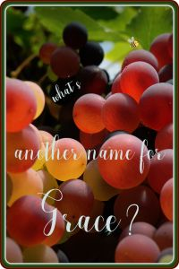 What's Another Word for Grace? | SHALOM in Our Times