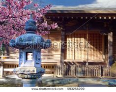 Japanese temple with cherry blossoms.