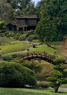 Some features of the Japanese garden are the temple bell, the canyons with spring-flowering trees, stone lanterns and pagodas. The Japanese house exhibits elements of traditional Japanese life