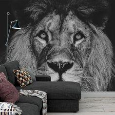 Oeps, deze kijkt je zo recht aan. #fotobehang #behang #behangen #fotomuur #fotowand #muur #interieur #leeuw #zwartwit #dier #wildlife Laundry Room Tile, Kidsroom, Picture Wall, Lion, Interior Styling, Room Inspiration, Sweet Home, Pictures, Painting