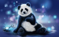 Cute panda and butterfly hd wallpaper Cute Panda Wallpaper, Cute Wallpaper For Phone, Bear Wallpaper, Cartoon Wallpaper, Hd Desktop, Girl Wallpaper, Desktop Wallpapers, Panda Wallpapers, Cute Wallpapers