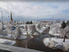 Tracadie, N.B. Ice Storm - 2016. Ice Storm, New Brunswick, Paris Skyline, Scenery, Canada, Travel, Outdoor, Outdoors, Viajes