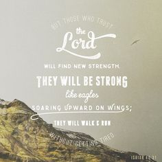 Isaiah but those who trust in the LORD will renew their strength; they will soar on wings like eagles; they will run and not grow weary; they will walk and not faint. Jesus Rettet, Isaiah 40 31 Kjv, Psalm 143, Wait Upon The Lord, Wings Like Eagles, Daily Bible, Daily Word, Bible Scriptures, Bible Quotes