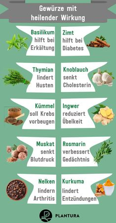 Die 10 besten Heilpflanzen aus dem eigenen Garten - Plantura Spices with a healing effect: medicine from your own garden? These ten plants feel just as good in your garden as in the pharmacy and can e Matcha Benefits, Lemon Benefits, Coconut Health Benefits, Parts Of A Plant, Nutrition, Matcha Green Tea, Plantation, Medicinal Plants, Cool Plants