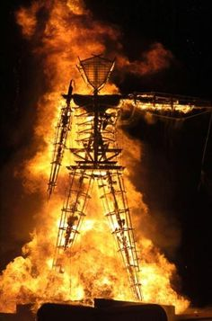 I want to go to the Burning Man festival in the Black Rock Desert of Nevada.
