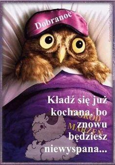 Weekend Humor, Photos For Facebook, Man Humor, Good Night, Crochet Hats, Bird, Animals, Texts, Draw