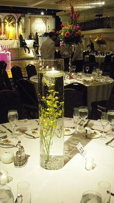 Submerged Orchids, Oncidium Orchids