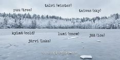 Tampere: Finnish Sauna, Finnish Food and Finnish Snow! Learn Finnish, Finnish Language, Finnish Sauna, See Picture, Mists, Learning, Travel, Life, Outdoor