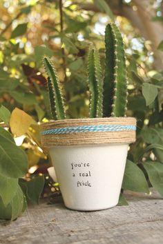 6 Youre a Real Prick small cactus planter kitchen Small Cactus, Cactus Pot, Cactus Flower, Cactus Plants, Pot Plants, Plant Pots, Diy Potted Plants, Round Cactus, Cactus Decor